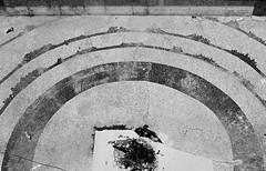 Altar (songhula) Tags: canon ae 1 black white ilford xp2