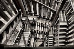 auf den Boden zurück / back to the ground (Judith Noack) Tags: treppe stairs stufen steps schatten shadows