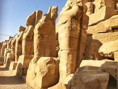Luxor temple, Luxor, Egypt (cattan2011) Tags: ancientegypt ancient architecturephotography architecture exploringtheegypt traveltuesday travelphotography travelphoto travel fineart fineartphotography culture sculpture landscapephotography landscape