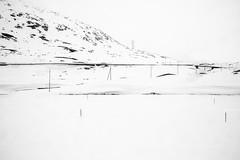 _O1A2733 (Vonella Giorgio) Tags: neve bn solitudine montagna natura