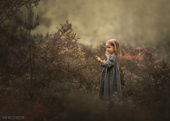 Cuteness overload (Aga Wlodarczak) Tags: agawlodarczak agawlodarczakphotography outdoors outdoorportrait childportrait childphotography childhood child children naturallight portrait forest spring girl toddler canon canon6d canoneos6d artistic fineart