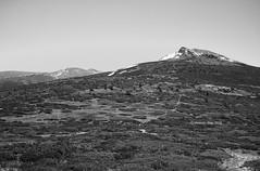 The way to Peñalara/Camino a Peñalara [BW] (Modesto Vega) Tags: peñalra cerrodelosclaveles sierradeguadarrama mountains alpine landscape outdoors nikon nikond600 d600 fullframe blackwhite blancoynegro monochrome monocromo schwarzundweiss noiretblanc bw mono