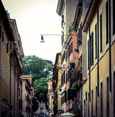 Roma non è una città come le altre. È un grande museo, un salotto da attraversare in punta di piedi. (Nabel Grant) Tags: roma travelphotography canonphotography streetstyle 55mm