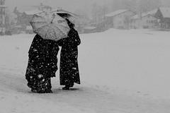 inverno (anna barbi) Tags: bn due persone ombrelli kandersteg neve