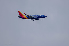 Southwest Airlines (Stephen R. D. Thompson) Tags: gardenhighway california locations southwestairlines stcphotography transportation stephen r d thompson planes featherriver usa 2019 stephenrdthompson levyroad