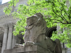 2019 Lion Under Shady Branches New York Public Library 8762 (Brechtbug) Tags: 2019 lions new york public library statues lion hanging shadows 42nd street 5th avenue nyc 05182019 may springtime soon spring weather eventually animal cat feline statue sculpture art cats ave st gargoyles gargoyle reclining repose resting facade stairs front entrance