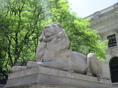 2019 Lion Under Shady Branches New York Public Library 8735 (Brechtbug) Tags: 2019 lions new york public library statues lion hanging shadows 42nd street 5th avenue nyc 05182019 may springtime soon spring weather eventually animal cat feline statue sculpture art cats ave st gargoyles gargoyle reclining repose resting facade stairs front entrance