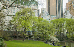 1379_0753FL (davidben33) Tags: spring 2019 new york manhattanstreetphoto street photos architecture people landscape cityscape buildings fashion women girls 718 5thave centralpark monument