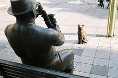 A cute audience (しまむー) Tags: minolta himatic e rokkor 40mm f17 kodak gold 200 北海道・東日本パス 特急 hokkaido jr express