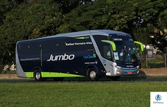 Jumbo - 3194 (RV Photos) Tags: jumbo marcopolo marcopolog7 paradiso1200 onibus bus toco turismo br116 rodoviapresidentedutra mercedesbenz