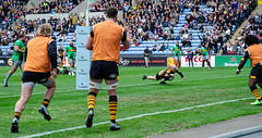 Joe Simmpson's first try (davidhowlett) Tags: ricoharena quins wasps premiership waspsrugby gallagher rugby ricoh rugbyunion coventry harlequins