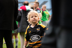 _DSC5711.jpg (davidhowlett) Tags: ricoharena quins wasps coventry waspsrugby gallagher ricoh rugbyunion pre rugby iership harlequins