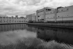 Hyogo Canal(兵庫運河) (Hideki-I) Tags: canal water bw blackandwhite monochrome hyogo kobe japan nikon z7 2470 白黒 黑白 日本 兵庫 運河 兵庫運河 神戸