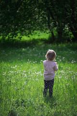 Summer feelings (Vstrandvik) Tags: summer sonyalpha nikon135mm a7ii girl portrait feelings