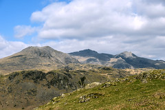 Scafell from Hardknott (pollylew) Tags: