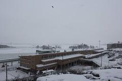 Helsinki view 397 (sohvimus) Tags: helsinki helsingfors lumi vinter sneeuw suomi finland snö satama harbour ullanlinna ulrikasborg hiver talvi winter tähtitorninmäki olympiaterminaali olympiaterminal