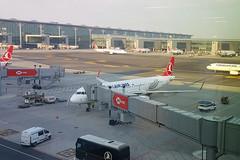20190503_070543.TC-JTI.A321.THY.DJ (JaffaPix +5 million views-thanks...) Tags: davejefferys jaffapix jaffapixcom aeroplane aircraft aviation airplane plane planespotting airline airliner airport ist newistanbulairport newistanbul ltfm