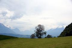 DSC01241 (WeatherMaker) Tags: schweiz switzerland hoher kasten wandern alpen alps