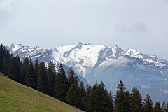 DSC01216 (WeatherMaker) Tags: schweiz switzerland hoher kasten wandern alpen alps