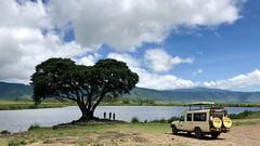 (晒晒太阳不长虫) Tags: tanzania ngorongoro safari