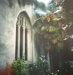 St Dunstan-in-the-East (Myahcat) Tags: 120 film mediumformat diana dianaf lomography lomo spring church ruin kodak kodakportra epsonv500