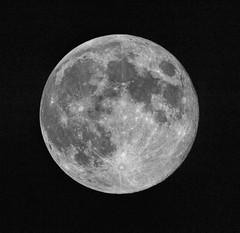 Once in a Blue Moon (edmason88) Tags: bluemoon fullmoon handheld tamron150600 earth