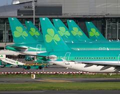 """Tails"" of Aer Lingus (Flame1958) Tags: aerlingus airbus a320 320 airlingusairbus aerlingustails aerlingusa320 dub eidw dublinairport 220916 0916 2016 eicpe 9029 eidec eidep eiden eidem eidvl"