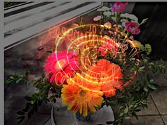 Mais, tout n'est pas dit... (...maman┬ic en pointillés...) Tags: compo fleurs fleurscoupées flowers cutflowers bouquet