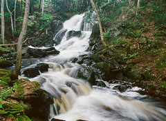 Wyandotte Falls (Kevin Pihlaja) Tags: upperpeninsula michigan waterfall stream river trees forest woodland film mediumformat kodakektar100 pentax pentax645 nature