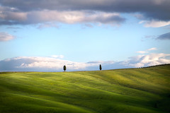 Quei due (Soloross) Tags: landscape valdorcia italy paesaggio collina hill alberi trees poetry nature sky