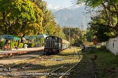 190419_07 (The Alco Safaris) Tags: kangra valley railway indian railways narrow gauge zdm4a palampur himanchal 225