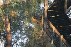 Wooden bridge (Nora077) Tags: