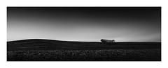 Remote Landing (TS446Photo) Tags: plane wreck fineart monochrome blackandwhite longexposure aeroplane iceland beach action pano