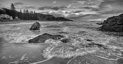Flynn's Beach (TerryABradley) Tags: 2017 landscapes blackwhite