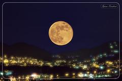 Πανσέληνος στη Θεσσαλονίκη - 19 Μαΐου 2019 !!! (Spiros Tsoukias) Tags: hellas greece macedonia ελλάδα μακεδονία θεσσαλονίκη πεύκα φίλυρο ασβεστοχώρι εξοχή χορτιάτησ βουνά φεγγάρι πανσέληνοσ ουρανόσ σύννεφα φύση σελήνη