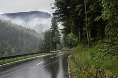 Oppenau Lierbach - Schwarzwald (sigi-sunshine) Tags: allerheiligen blackforest schwarzwald oppenau lierbach badenwürttemberg germany deutschland strase road rain regen nass wet lierbachstrase wasserfälleallerheiligen regennassefahrbahn kurve