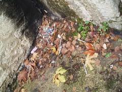 Čišćenje infektivnog otpada 01 12 2007 kapetanski (28)