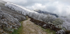 Route Napoleon (JohnFinn) Tags: camino caminofrances routenapoleon pyrenees