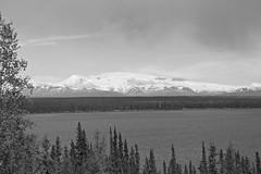 Willow Lake (B&W) (neukomment) Tags: willowlake alaska may 2019 spring canoneosrebelt5i sigmalens 18250mmf3563dcosmacrohsm bw blackwhite