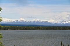 Willow Lake (4) (neukomment) Tags: willowlake alaska may 2019 spring canoneosrebelt5i sigmalens 18250mmf3563dcosmacrohsm