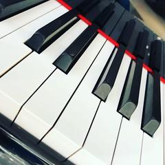 My piano (NIKONIANO) Tags: