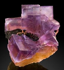 Tucson2018_8_Fluorite_Bitumen_AnnabelLeeMineIllinois100mm (karadogansabri) Tags: 100mm annabellee bitumen denver exceptionalminerals fluorite hardinco kward0917 mine usa llinois mineral