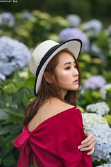 TOM09575 (HwaCheng Wang 王華政) Tags: 人像 外拍 時裝 陽明山 繡球花 md model portraiture sony a7r3 ilce7rm3 a7r mark3 a9 ilce9 24 35 85 gm dress flower hydrangea
