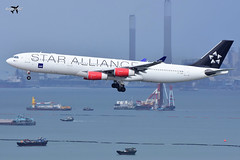 SAS Scandinavian Airlines Airbus A340-313 OY-KBM (Star Alliance Livery). (* Raymond C.*) Tags: sas scandinavian airlines airbus a340 a343 oykbm star alliance sk vhhh hkg