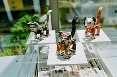 (Akira F.) Tags: nikon nikonfm2 28mm color analog film filmphotography filmcamera filmisnotdead ファインダー越しの私の世界 写真好きな人と繋がりたい tokyocameraclub
