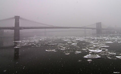 FOTO0935+ (dvddano) Tags: manhattan newyork pentax k5 travel