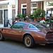 1978 Pontiac Firebird Trans Am 6.6 V8