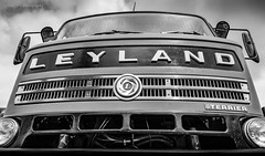 Leyland Terrier (deltic17) Tags: classic lorry truck leyland terrier blackwhite monochrome 1980 vintage hitoric british haulage road transport