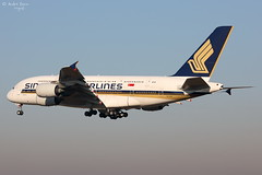 Singpore Airlines (ab-planepictures) Tags: singapore airlines fra eddf a380 airbus frankfurt flughafen flugzeug planespotting plane aircraft aviation