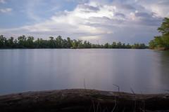 Biedensand Fretter Loch (BENJONSON) Tags: biedensand hessen lampertheim deutschland naturschutzgebiet bergstrase landscape landschaft langzeitbelichtung nd filter canon 7d
